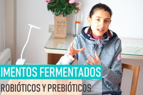 Alimentos fermentados, probióticos y prebióticos IDIFERENCIASI ¿Hay que tomar suplementos de probióticos?